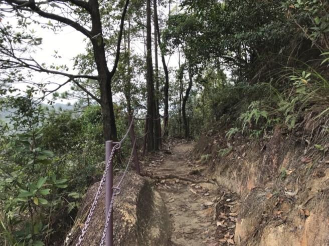 Hiking 26.3.17 Hong Pak Country Trail (15)