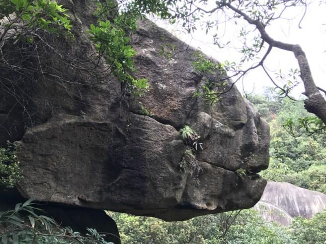 Hiking 26.3.17 Hong Pak Country Trail (17)
