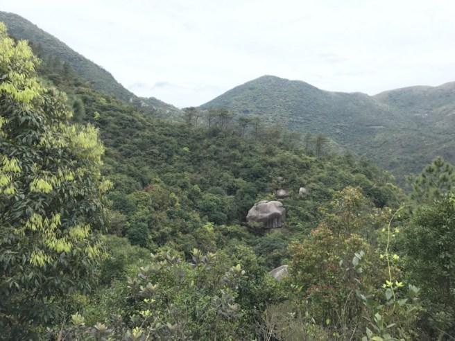 Hiking 26.3.17 Hong Pak Country Trail (18)