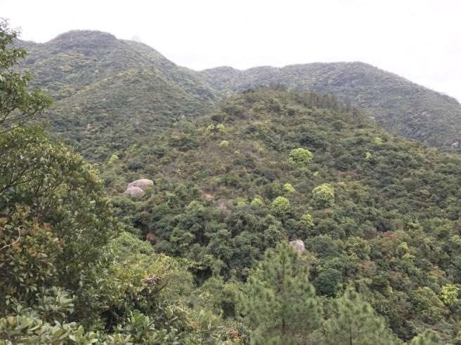 Hiking 26.3.17 Hong Pak Country Trail (19)