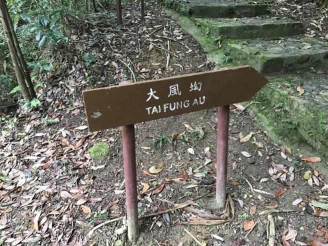 Hiking 26.3.17 Hong Pak Country Trail (3)