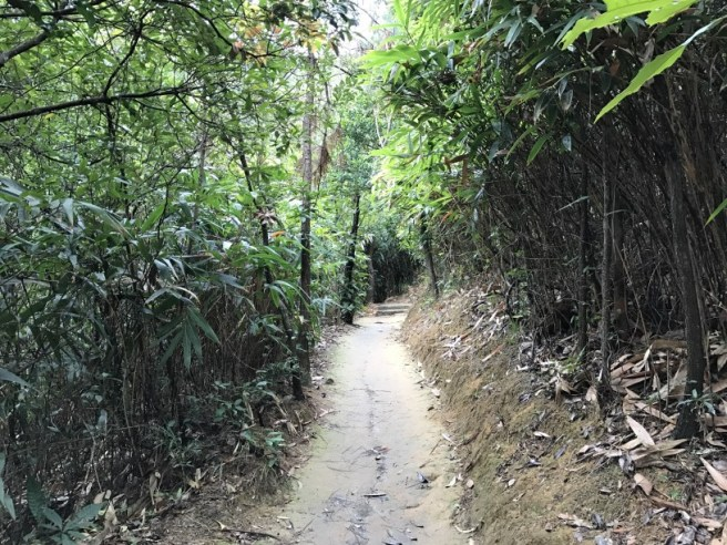 Hiking 26.3.17 Hong Pak Country Trail (4)