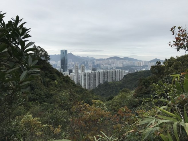 Hiking 26.3.17 Hong Pak Country Trail (6)