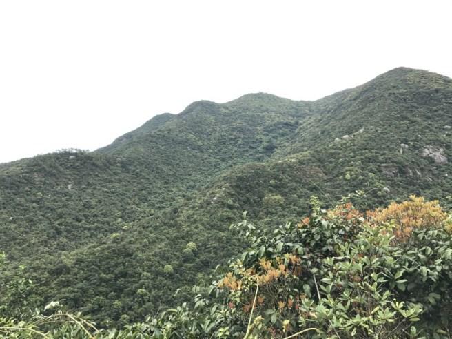 Hiking 26.3.17 Hong Pak Country Trail (7)
