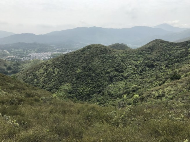 Hiking 15.4.2017 Ki Lun Shan (18)