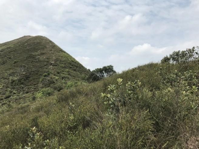 Hiking 15.4.2017 Ki Lun Shan (19)