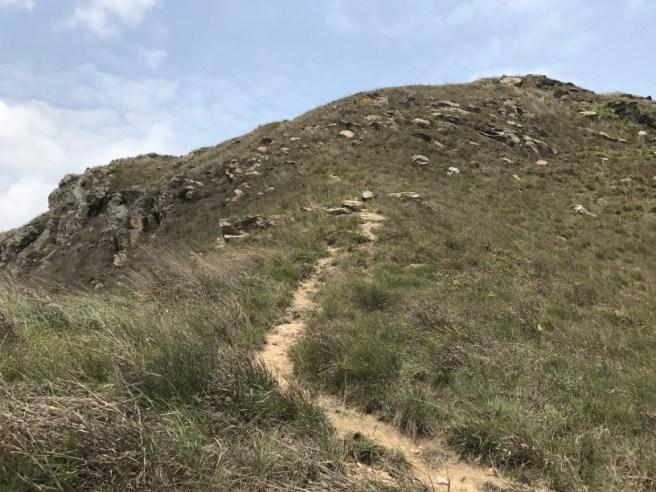 Hiking 15.4.2017 Ki Lun Shan (28)