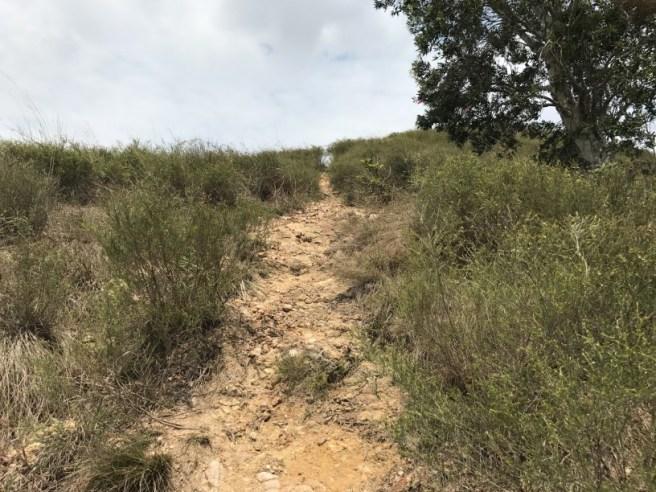 Hiking 15.4.2017 Ki Lun Shan (32)