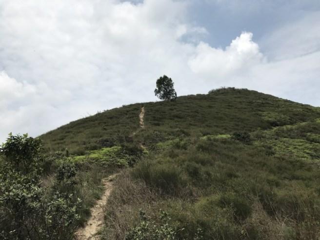 Hiking 15.4.2017 Ki Lun Shan (33)