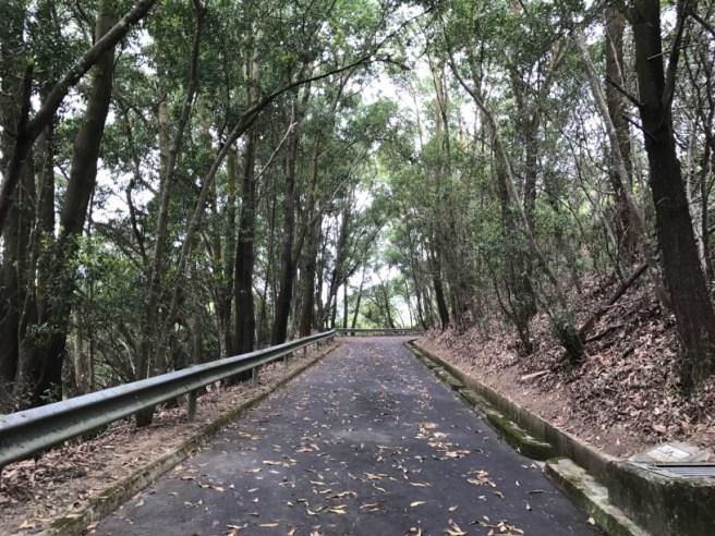 Hiking 15.4.2017 Ki Lun Shan (7)
