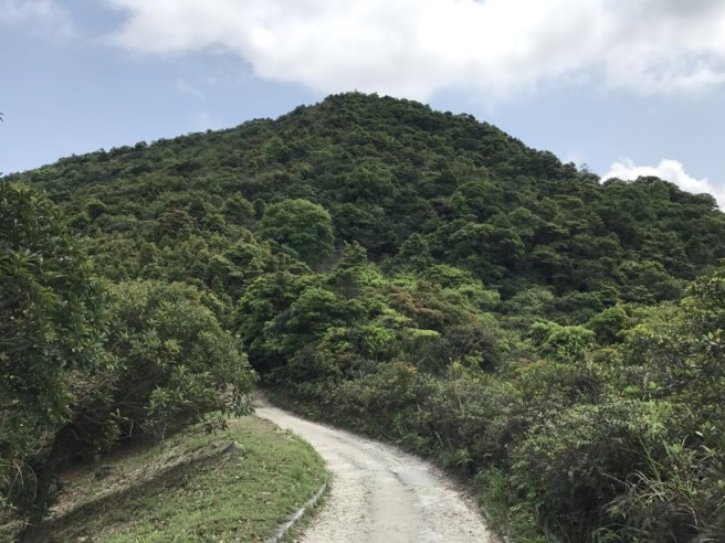 Hiking 16.4.17 Cloudy Hill (25)