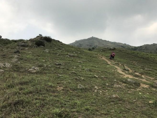 Hiking 29.4.17 Tai Mo Shan (18)