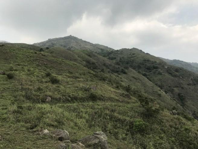 Hiking 29.4.17 Tai Mo Shan (23)