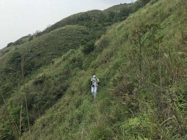 Hiking 29.4.17 Tai Mo Shan (27)