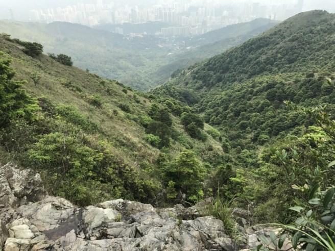 Hiking 29.4.17 Tai Mo Shan (28)