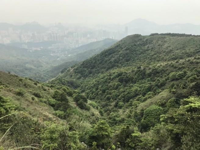 Hiking 29.4.17 Tai Mo Shan (29)