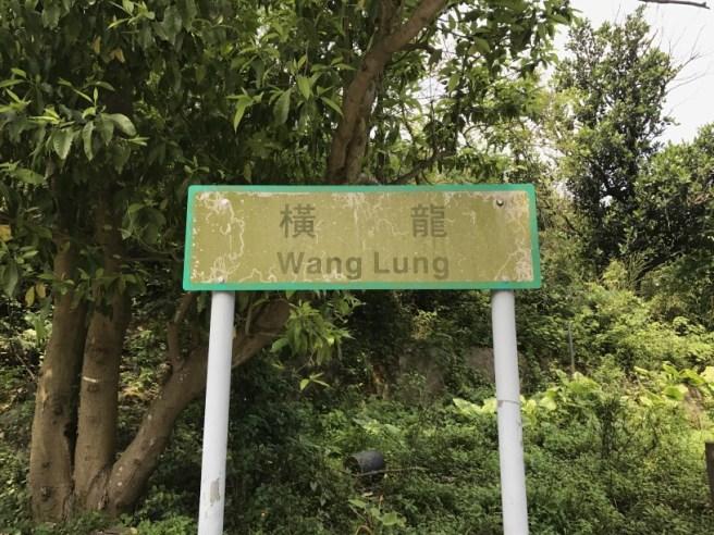 Hiking 29.4.17 Tai Mo Shan (3)