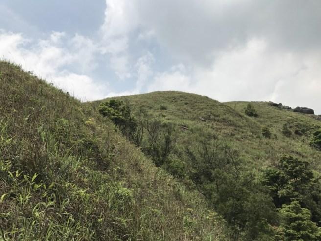 Hiking 29.4.17 Tai Mo Shan (35)