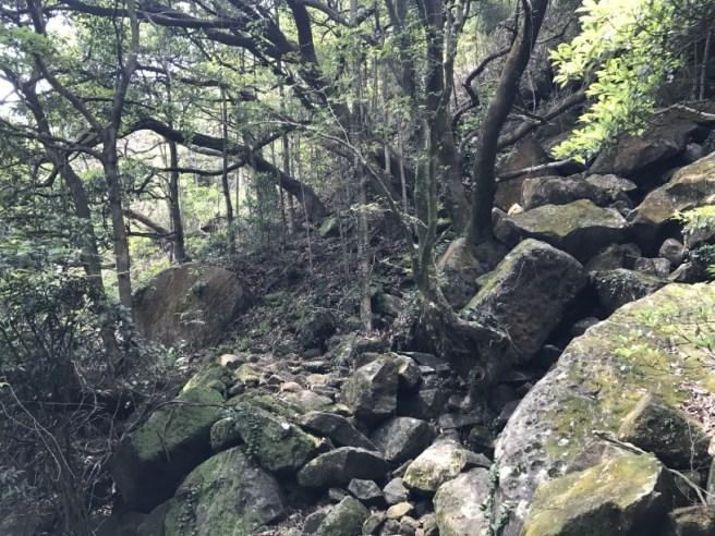 Hiking 29.4.17 Tai Mo Shan (38)