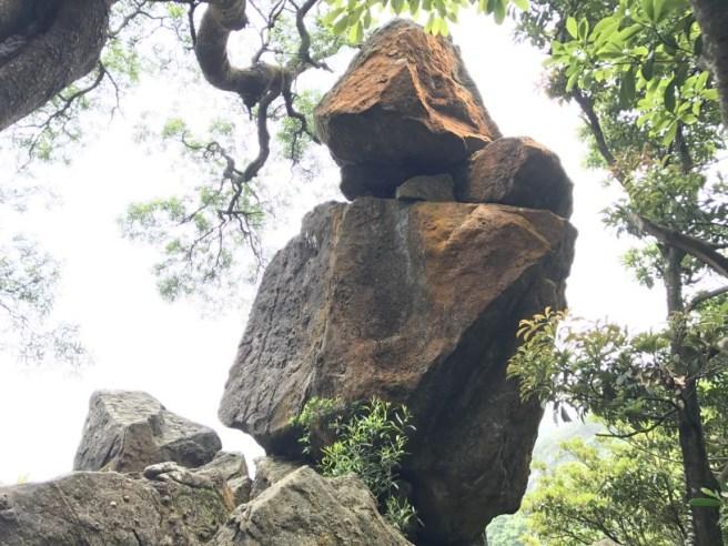 Hiking 29.4.17 Tai Mo Shan (39)