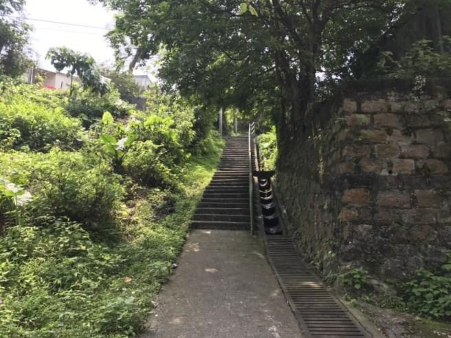 Hiking 29.4.17 Tai Mo Shan (4)