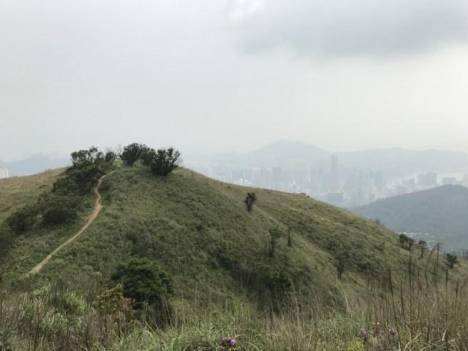 Hiking 29.4.17 Tai Mo Shan (47)