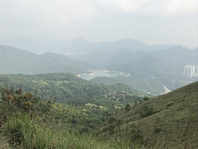 Hiking 29.4.17 Tai Mo Shan (48)