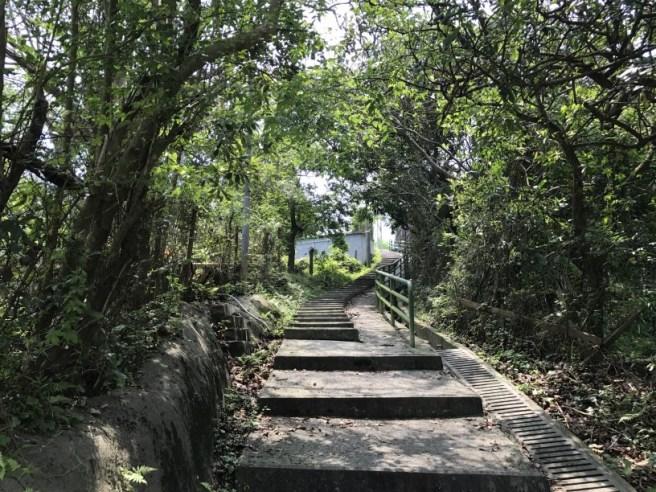 Hiking 29.4.17 Tai Mo Shan (5)