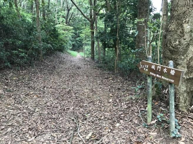 Hiking 29.4.17 Tai Mo Shan (57)