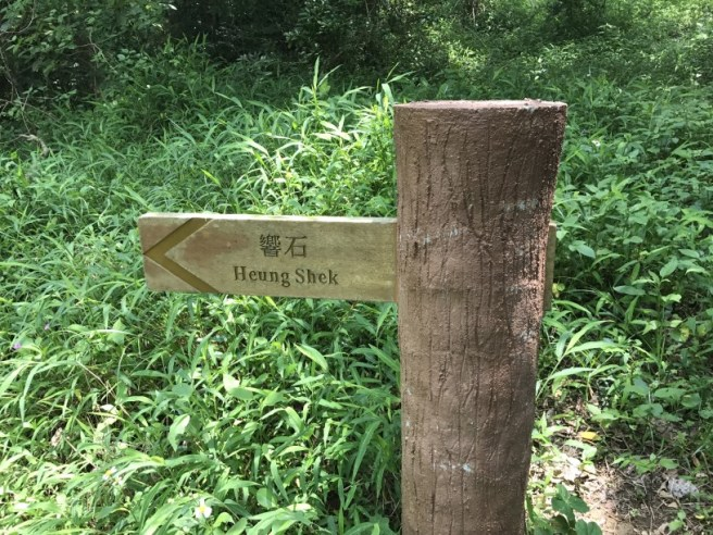 Hiking 29.4.17 Tai Mo Shan (8)