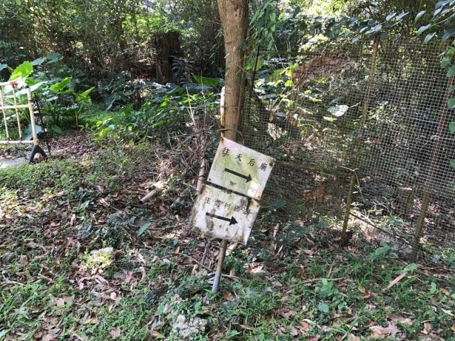Hiking 4.4.2017 Ma Wan (24).JPG