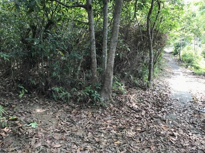 Hiking 1.5.17 To Kwa Peng (11)