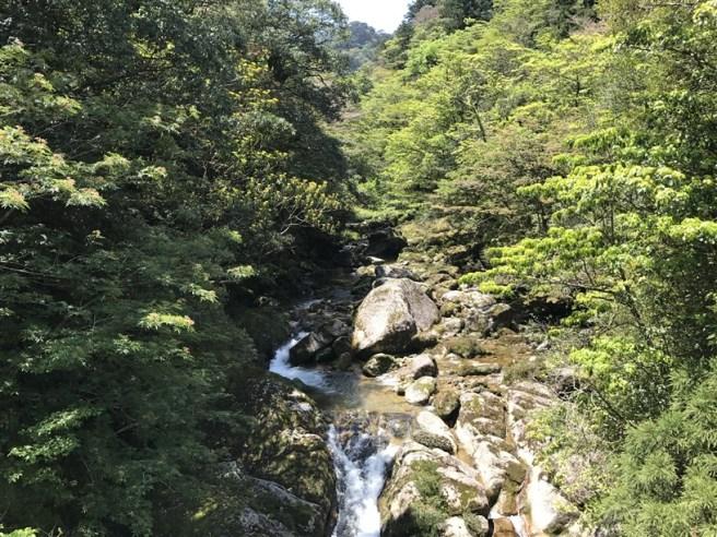 Hiking 10.5.2017 Yakushima (11)