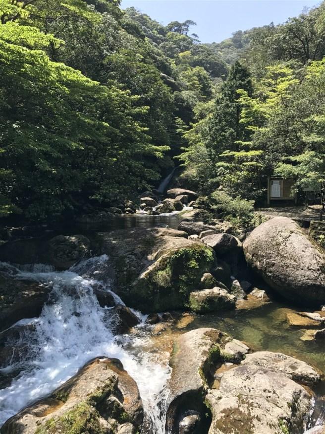 Hiking 10.5.2017 Yakushima (2)
