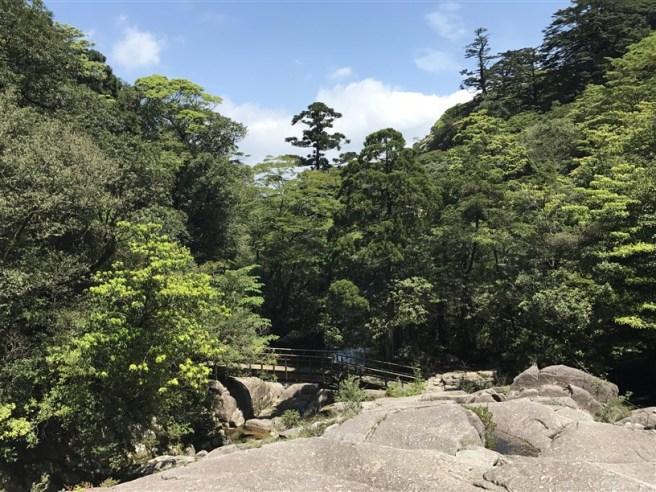 Hiking 10.5.2017 Yakushima (3)