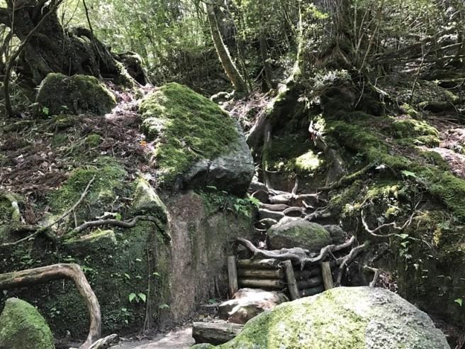 Hiking 10.5.2017 Yakushima (31)