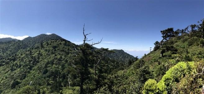 Hiking 10.5.2017 Yakushima (41)