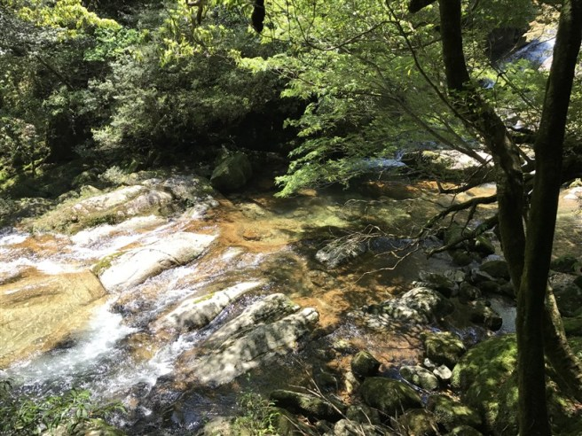 Hiking 10.5.2017 Yakushima (6)