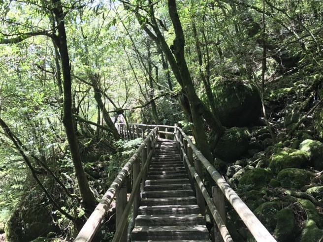 Hiking 10.5.2017 Yakushima (8)