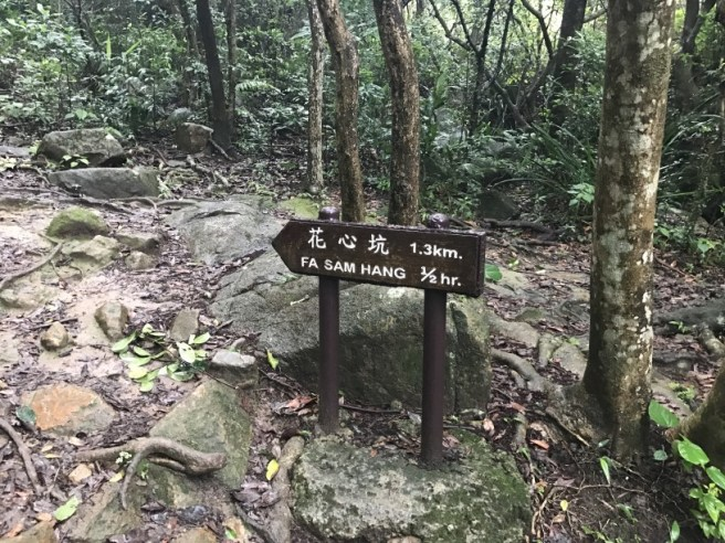 Hiking 21.5.17 Tai No Ancient Trail (24)