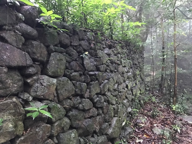 Hiking 21.5.17 Tai No Ancient Trail (34)