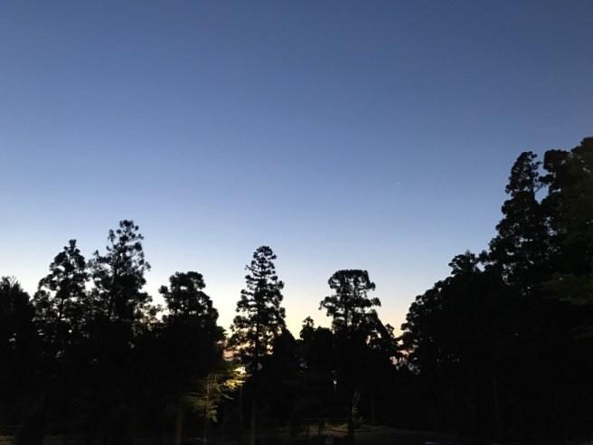 Hiking 8.5.17 - Jomon Sugi yakushima (1)