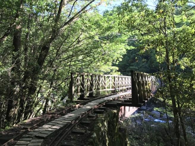 Hiking 8.5.17 - Jomon Sugi yakushima (11)