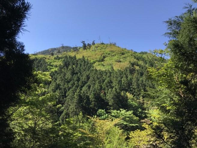 Hiking 8.5.17 - Jomon Sugi yakushima (14)