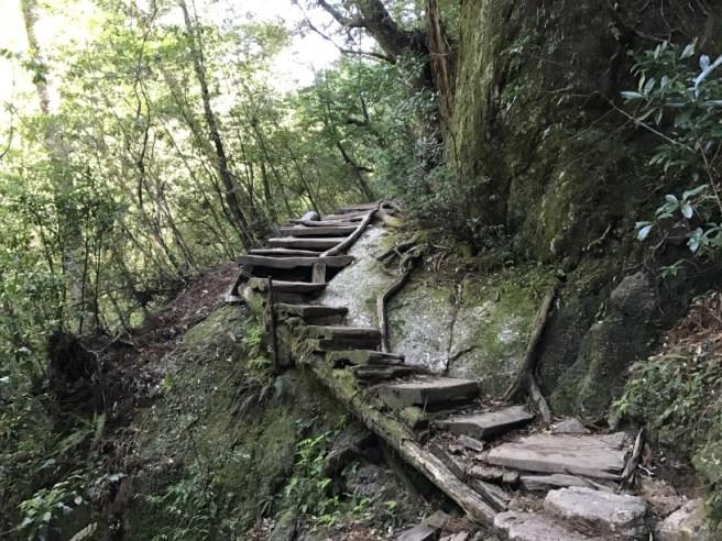 Hiking 8.5.17 - Jomon Sugi yakushima (18)