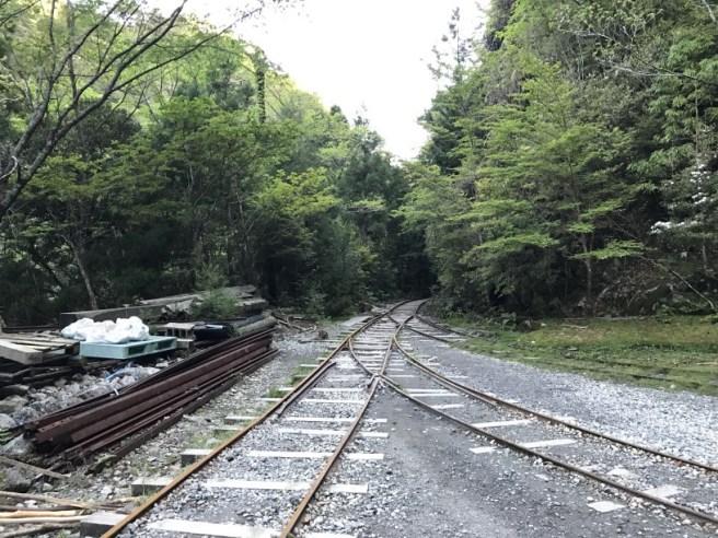 Hiking 8.5.17 - Jomon Sugi yakushima (4)