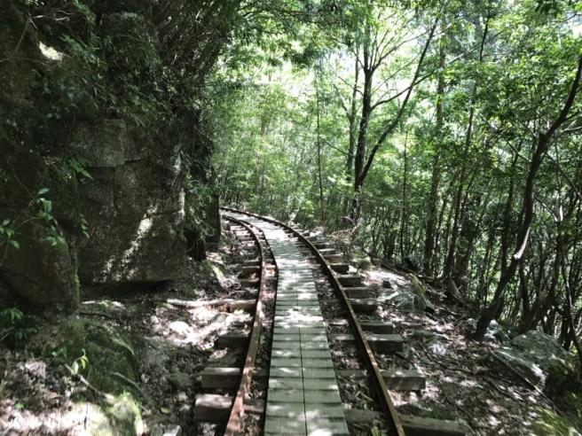 Hiking 8.5.17 - Jomon Sugi yakushima (47)