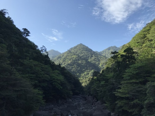 Hiking 8.5.17 - Jomon Sugi yakushima (57)