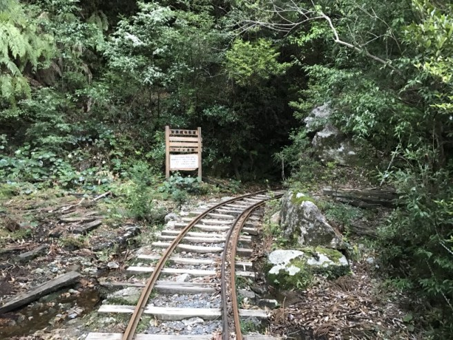 Hiking 8.5.17 - Jomon Sugi yakushima (6)