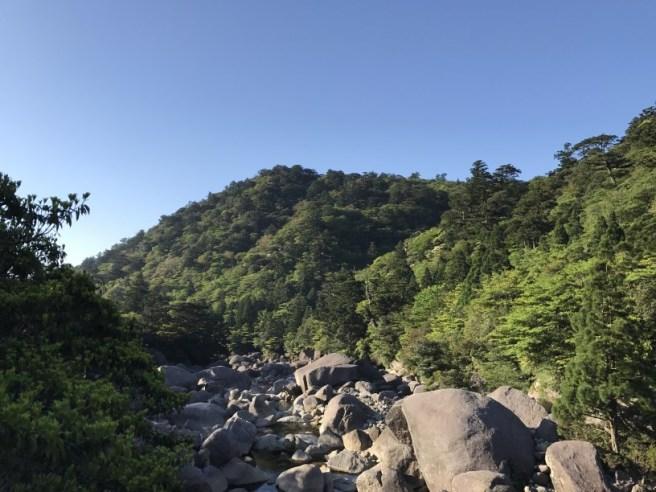 Hiking 8.5.17 - Jomon Sugi yakushima (9)